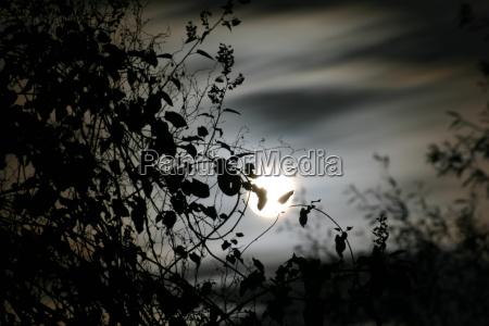 autumn, night - 70539
