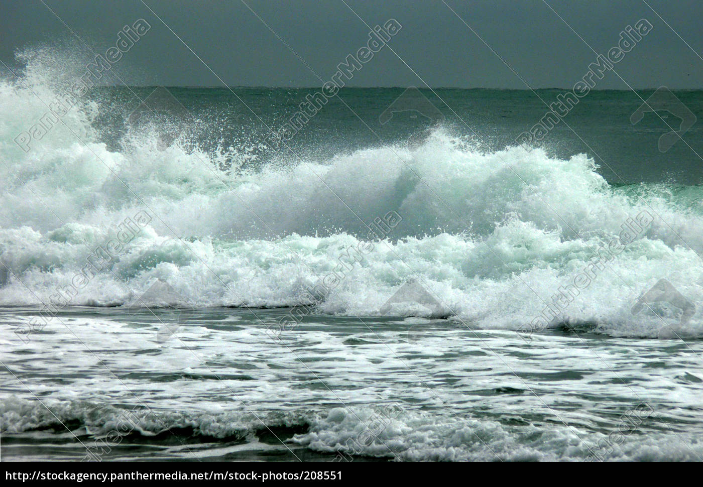 surf - 208551