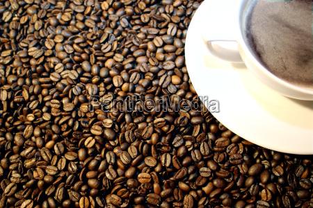 café, ..., no, life, before, coffee - 236626