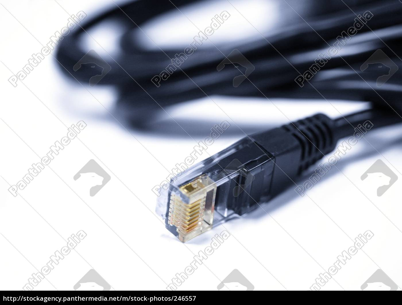 network, cables - 246557