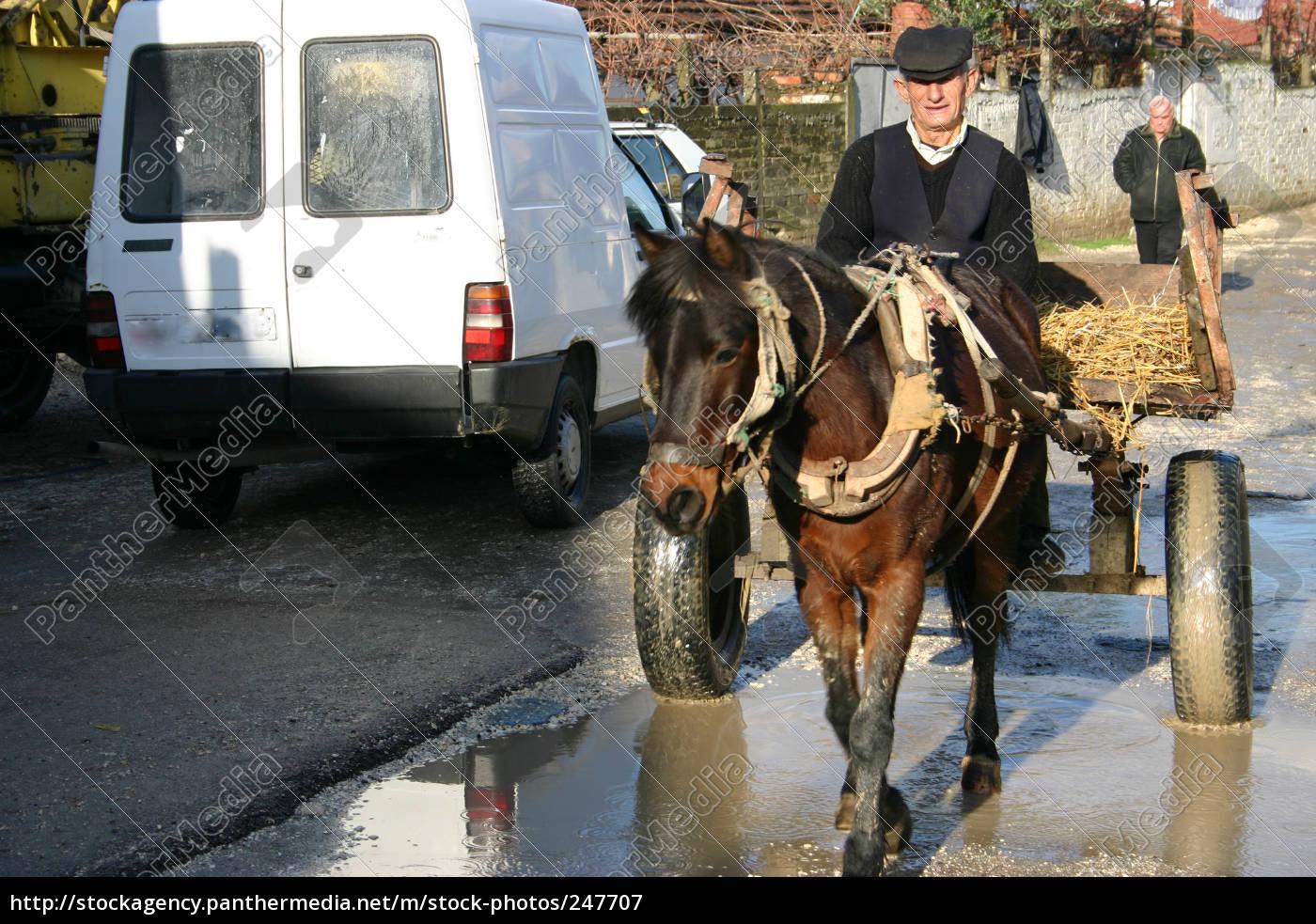 man, with, horse, cart, (albania) - 247707