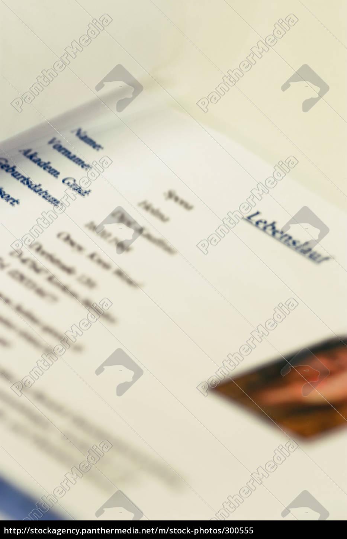 curriculum, vitae - 300555