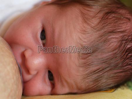 breastfeeding, 2 - 309660