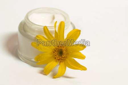 arnica, ointment - 324450