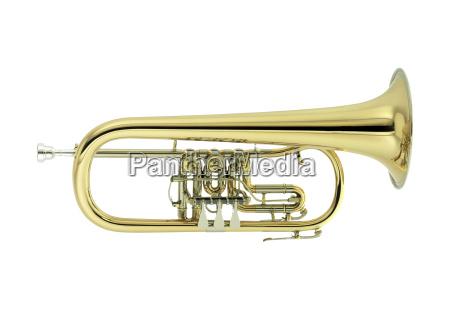 flugelhorn - 328249