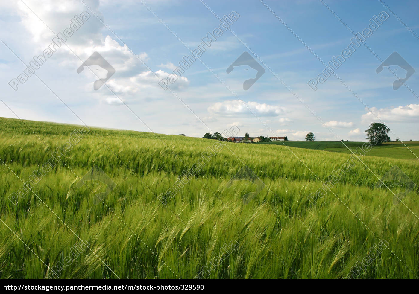 erdinger, country - 329590