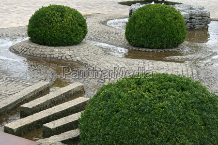 water stones plants