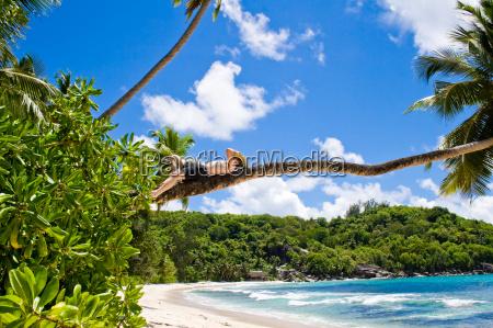 ferias praia beira mar da praia