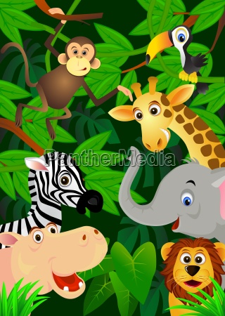 animal in the jungle