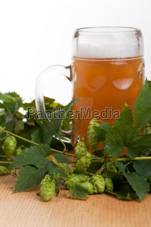trunek owoc owoce owocowe bierglas piwo