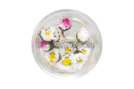 gaensebluemen in glas von oben