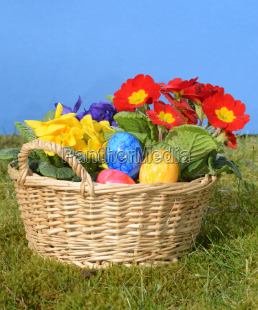 easter easter egg egg eggs primrose