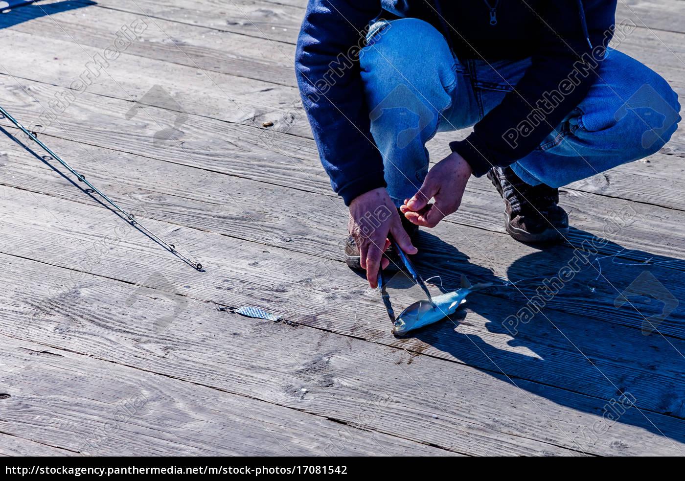 fishing - 17081542