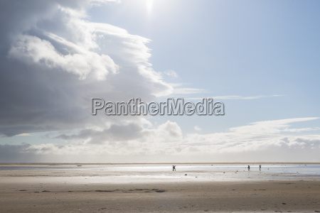 paseo viaje playa la playa orilla