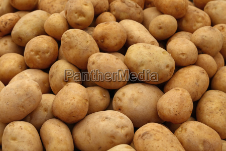 heap of new potato at retail